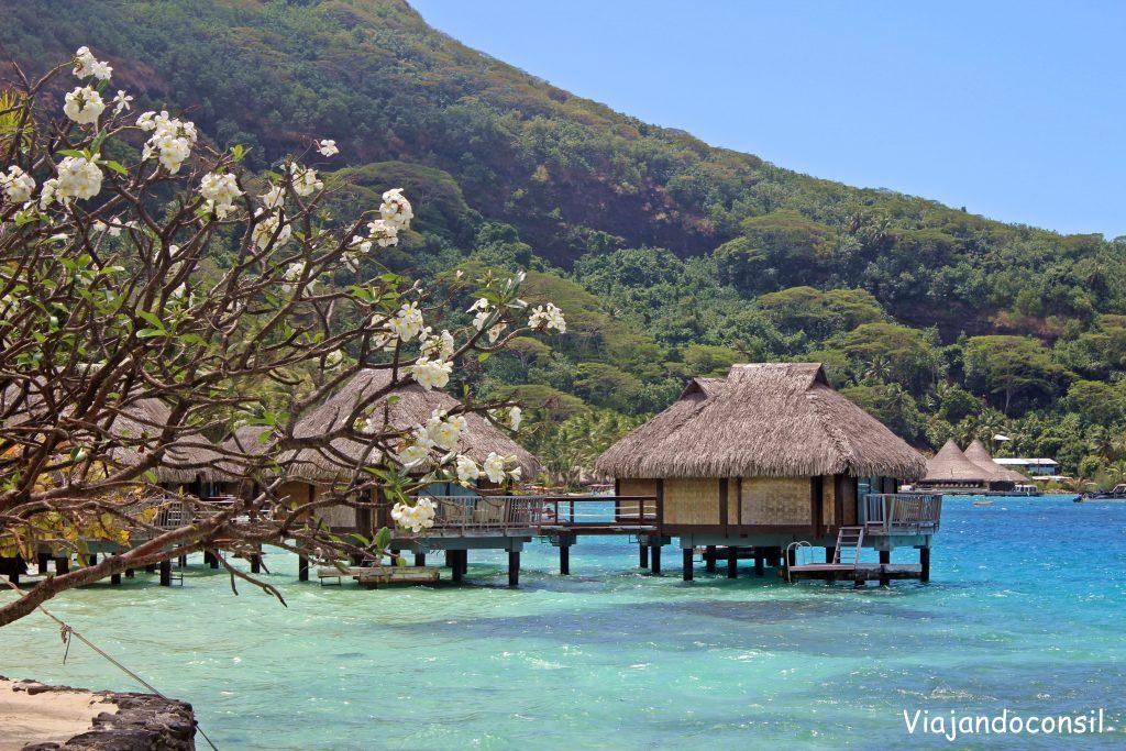 Maitai Polynesia bungalows