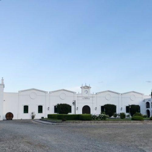 Bodega-El-Esteco