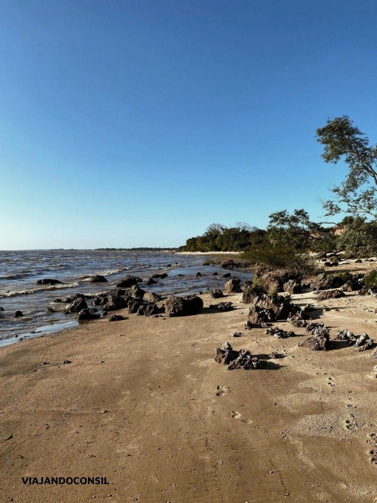 orilla de playa de rio